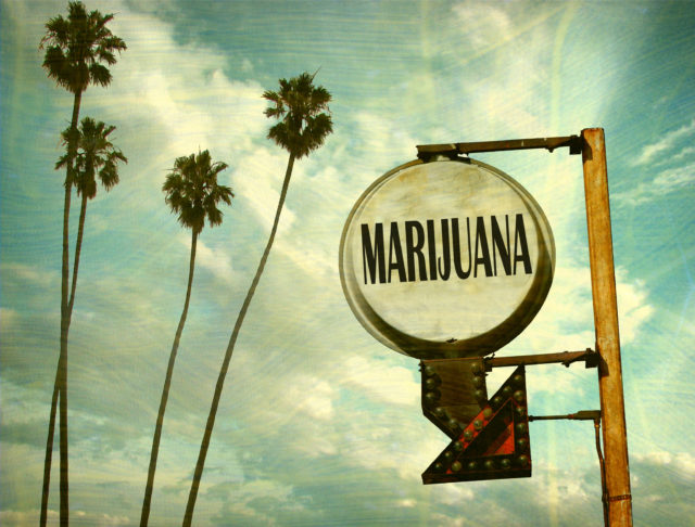 Marijuana in the Workplace, Drug test, drug tests, marijuana, company policy